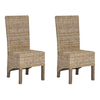 Safavieh Set of 2 Fox Home Natural Accent Chairs