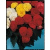 Garden State Bulb 3-Pack Picotee Yellow/Red Begonia (LB22241)