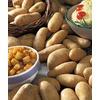 Garden State Bulb 8-Pack Russet Burbank Potato Plant (L20403)