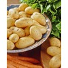 Garden State Bulb 8-Pack Yukon Gold Potato Plant (LB21585)