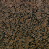 Bedrosians 18-in x 18-in Brown Granite Floor Tile