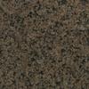 Bedrosians 12-in x 12-in Brown Granite Floor Tile