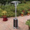 Garden Treasures 45,000-BTU Mocha Steel Floorstanding Liquid Propane Patio Heater