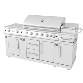 Master Forge 6-Burner (73,000-BTU) Natural Gas or Liquid Propane Gas and Charcoal Grill with 2 Side Burners