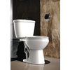 AquaSource High-Efficiency White 1.6; 1.1-GPF 12 Rough-In WaterSense Elongated Dual-Flush 2-Piece Comfort Height Toilet