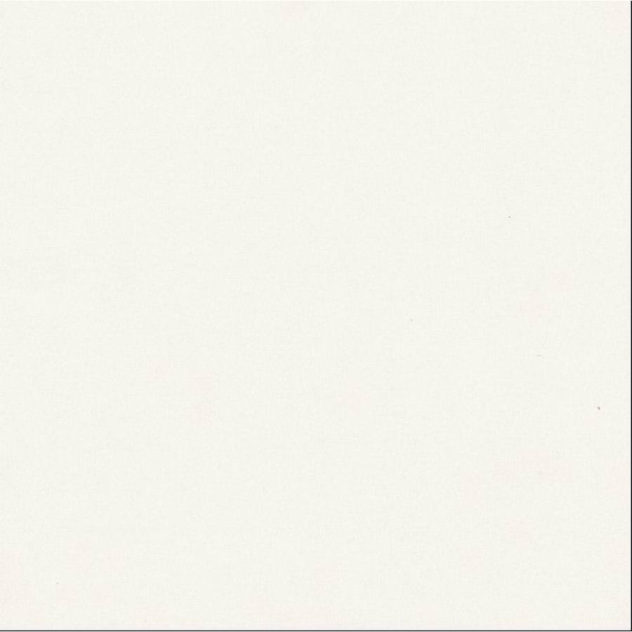 Shop style selections white white matte ceramic floor tile for 12 x 12 white floor tile