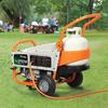 Generac LP 3,250-Running Watts Portable Generator with Generac Engine