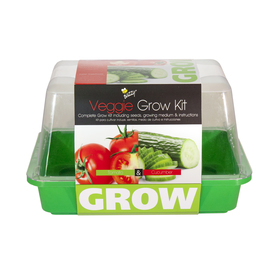 Buzzy Vegetable Gardening Kit