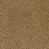 STAINMASTER Ryland Linden Cut Pile Indoor Carpet