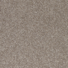 STAINMASTER Ryland Badin Cut Pile Indoor Carpet