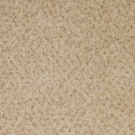 Shop STAINMASTER Pleasant Grove Speckled Egg Textured ...