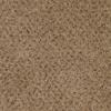 STAINMASTER Pleasant Grove Maximus Textured Indoor Carpet