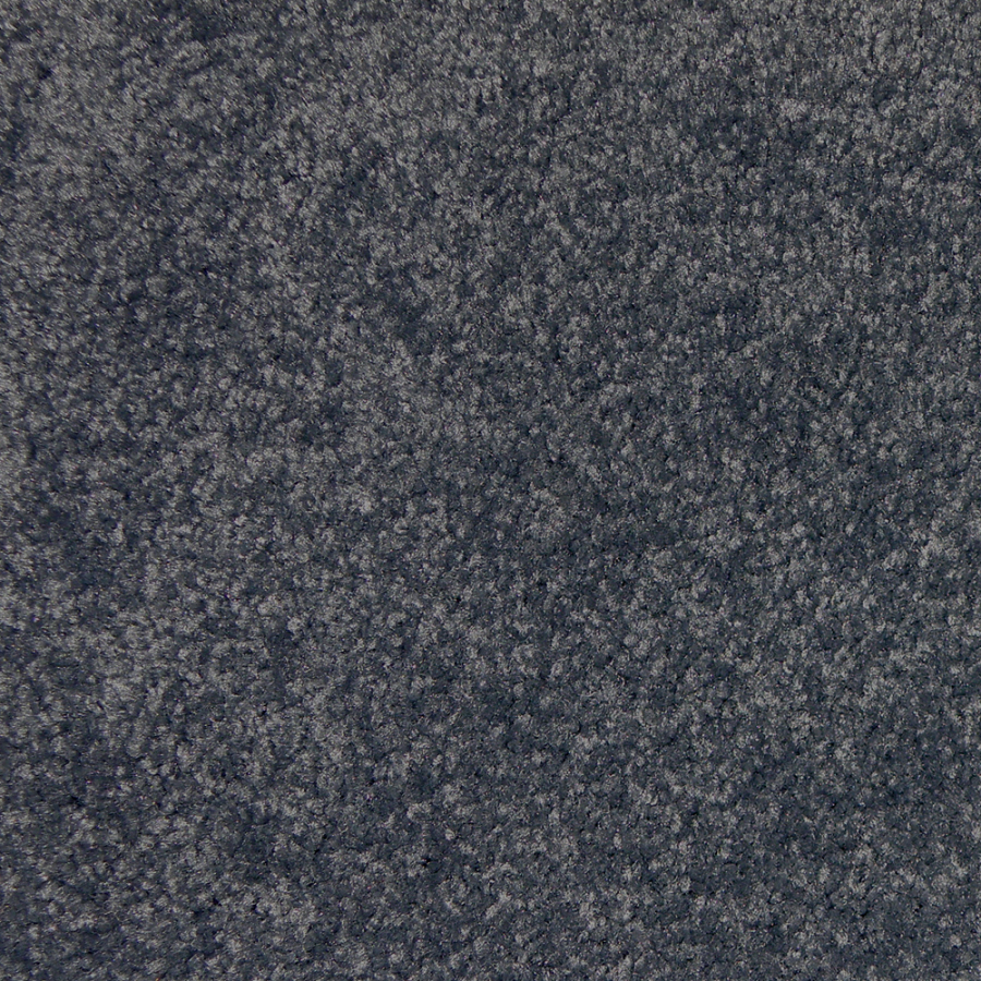 Shop STAINMASTER Golden Rule Grey Blue Textured Indoor ...