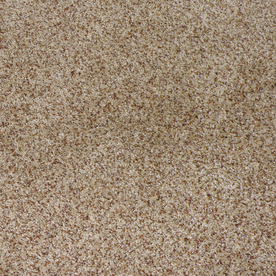 STAINMASTER Active Family Maple Springs Sable Indoor Carpet