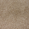 STAINMASTER Maple Springs Sable Cut Pile Indoor Carpet