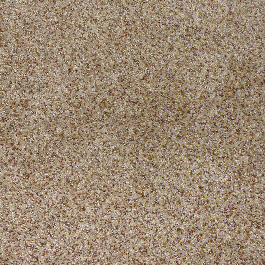 Shop stainmaster stanfield sable cut pile indoor carpet at for Stainmaster carpet