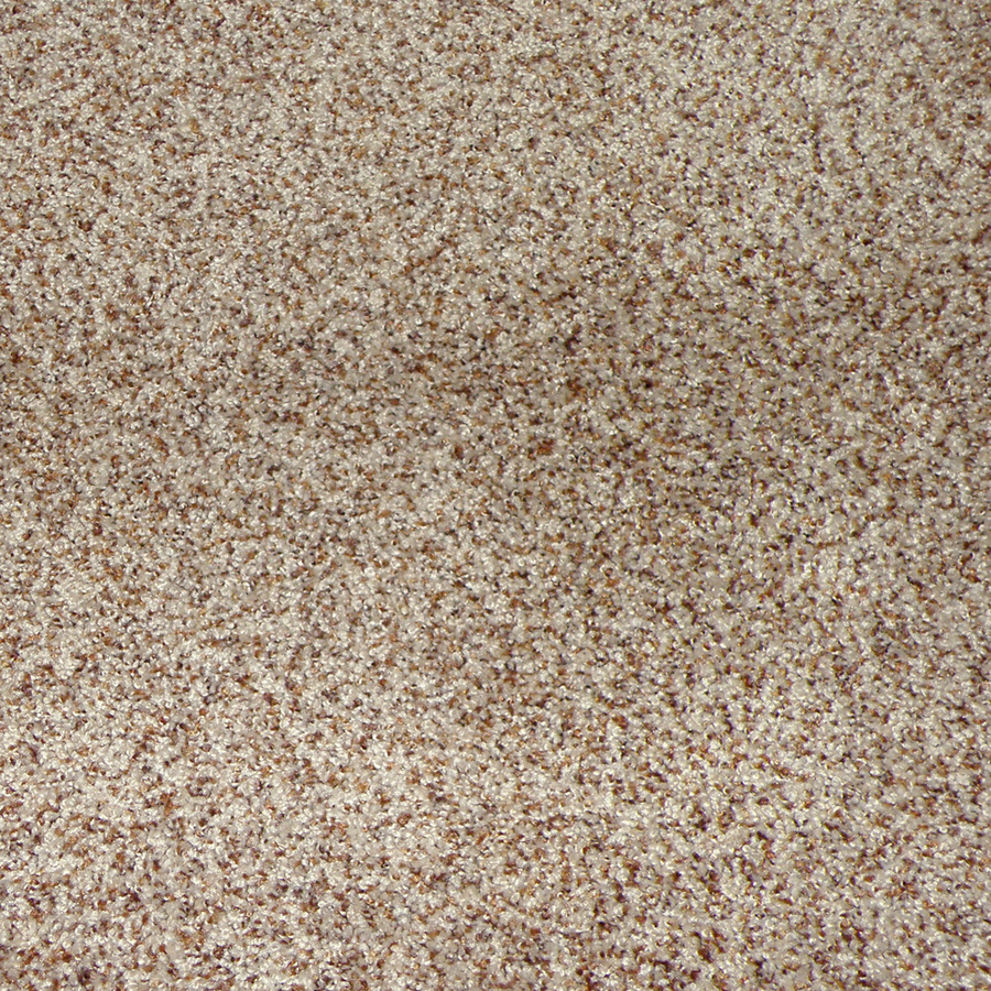Shop stainmaster weddington chestnut hill cut pile indoor for Stainmaster carpet