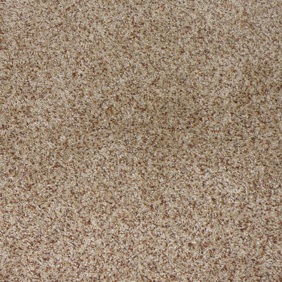 Shop STAINMASTER Weddington Sable Cut Pile Indoor Carpet ...
