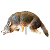 Bird-X 16-in H x 37-in L 3-D coyote non-chemical bird repellent