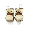 Holiday Living 2-Pack Natural Brown and White Ornament Set