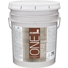 Olympic ONE White Flat Latex Interior/Exterior Paint (Actual Net Contents: 619-fl oz)