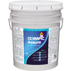 Olympic Assure Satin Satin Latex Exterior Paint (Actual Net Contents: 619 Fluid Oz.)