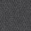Coronet Breckenridge Charcoal Textured Indoor Carpet