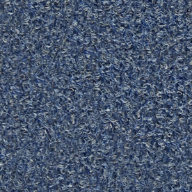 Shop Rare Image Sapphire Indoor Outdoor Carpet at Lowes