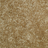 Stallion Big Skye Textured Indoor Carpet