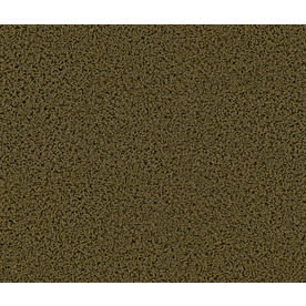 STAINMASTER Appealing Marietta Frieze Indoor Carpet
