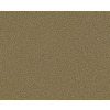 STAINMASTER Active Family Vivid Washburn Textured Indoor Carpet