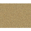 STAINMASTER Active Family Gleaming Coventry Frieze Indoor Carpet