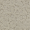 STAINMASTER Active Family Glisten Franklin Fashion Forward Indoor Carpet