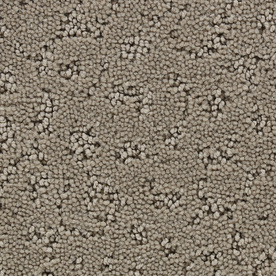 STAINMASTER Active Family Glisten Madison Fashion Forward Indoor Carpet