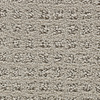 STAINMASTER Active Family Sparkling Franklin Fashion Forward Indoor Carpet