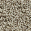 STAINMASTER Active Family - Magic Fresh Carefree Night Owl Berber Indoor Carpet