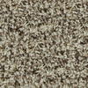 STAINMASTER Active Family Carefree Windsor Frieze Indoor Carpet