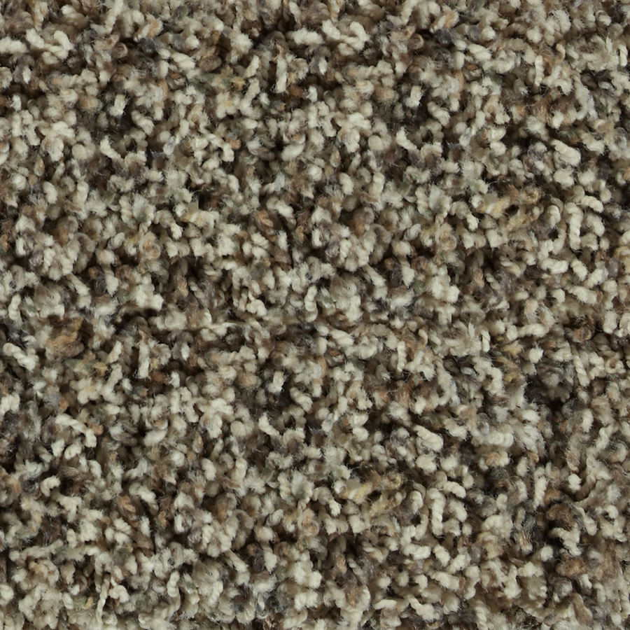 Shop STAINMASTER Active Family Austere Arden Frieze Indoor Carpet at Lowes.com
