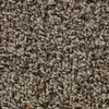 STAINMASTER Active Family Austere Kenton Frieze Indoor Carpet