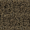 STAINMASTER Active Family Austere Sedona Frieze Indoor Carpet