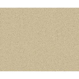 STAINMASTER Active Family Fresh Breeze Newburgh Textured Indoor Carpet