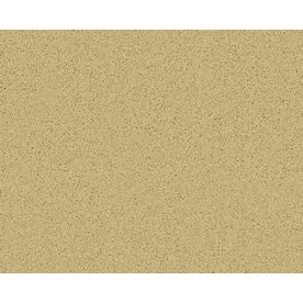 STAINMASTER Active Family Magic Fresh Clinton Textured Indoor Carpet