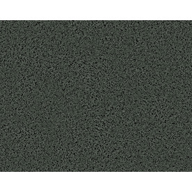 STAINMASTER Active Family Sausalito II Delano Frieze Indoor Carpet