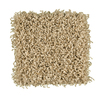 STAINMASTER Active Family - Magic Fresh Exemplary Summer Sky Textured Indoor Carpet