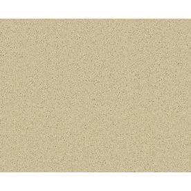 Coronet Active Family Exalted Vista Textured Indoor Carpet