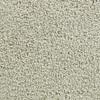 Coronet Active Family Exalted Dazed Textured Indoor Carpet