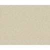 Coronet Active Family Exalted Ambrosia Textured Indoor Carpet
