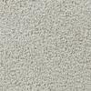 Coronet Active Family Exalted Opulent Textured Indoor Carpet