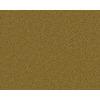 Coronet Active Family Exalted Marsh Textured Indoor Carpet