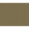 Coronet Active Family Exalted Mayflower Textured Indoor Carpet